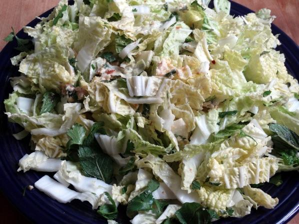 Spicy Thai Salad   Marta in Chicago